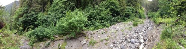 North Fork Skokomish River trail