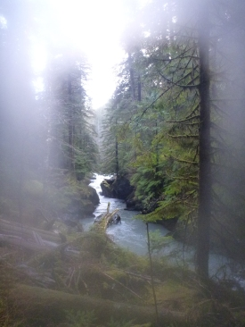 Boulder River, Mount Baker - Snoqualmie National Forest