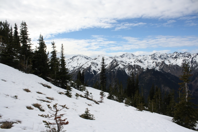 The view from MArmot Pass looking west, Olympic National Park