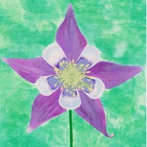 Colorful Columbine, watercolor, $90.00