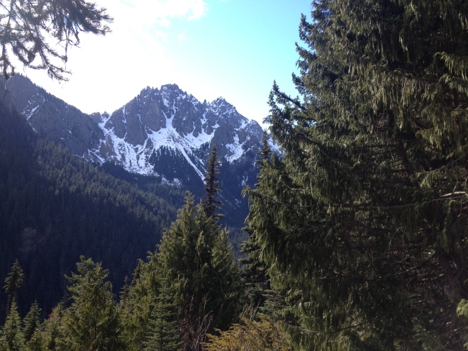 View from the trail to Marmot Pass, Olympic National Park
