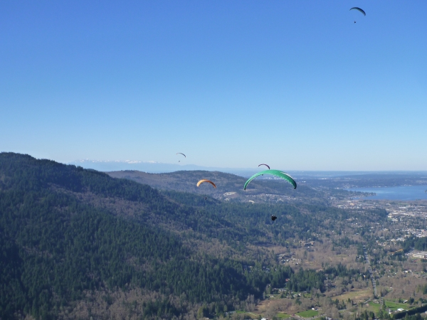 View from Poo Poo Point of paragliders along the horizon