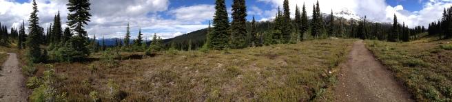 Taylor Meadows, Garibaldi Provincial Park, BC, Canada