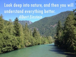 Skagit River with Einsten quote