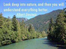 Skagit River with Einsten quote