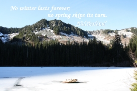 Annette Lake, Mount Baker-Snoqualmie National Forest, WA