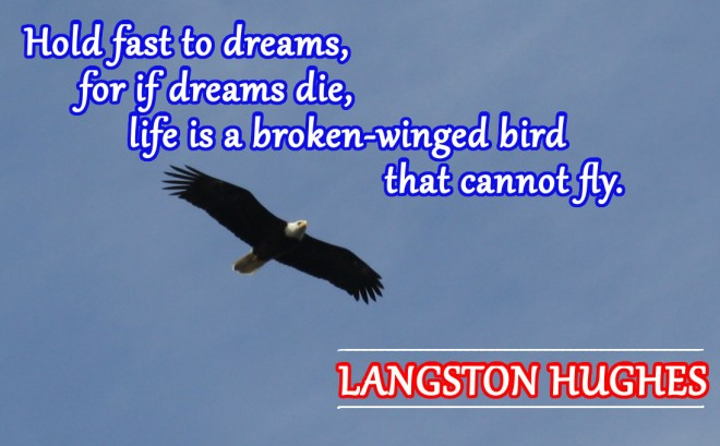 Eagle with Langston Hughes quote